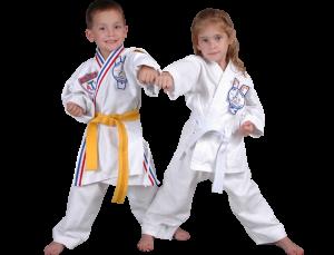 Preschool martial Arts kids